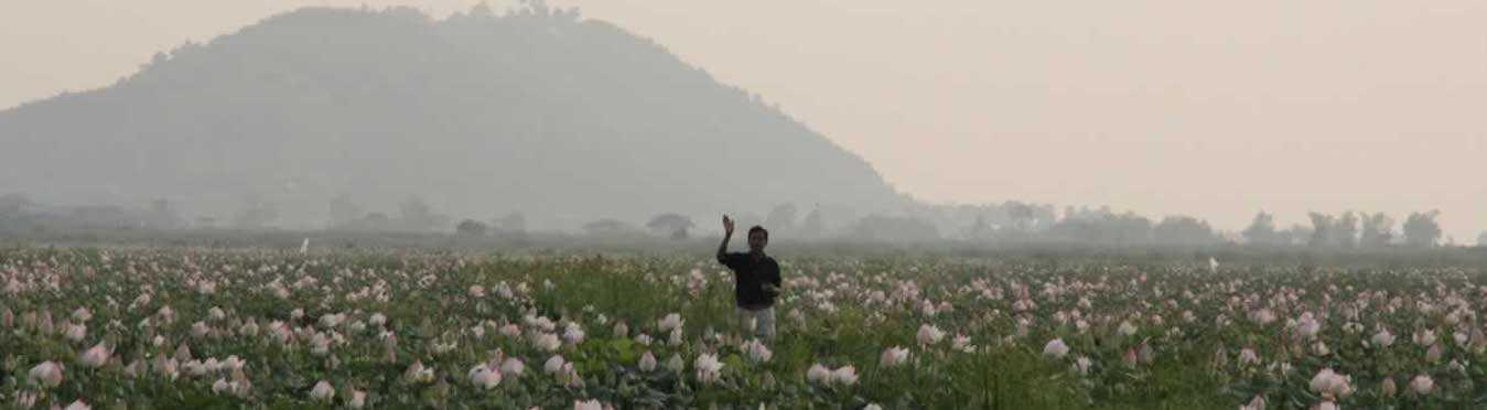 Cambodia Community Volunteer