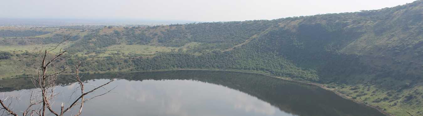 Primate Safari and Cultural Experience in Uganda