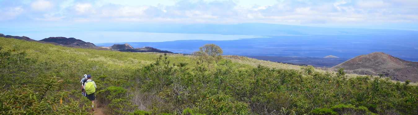 Galapagos Land Tour