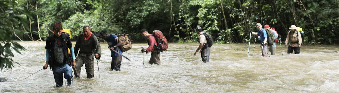 Darien Gap Jaguar Expedition