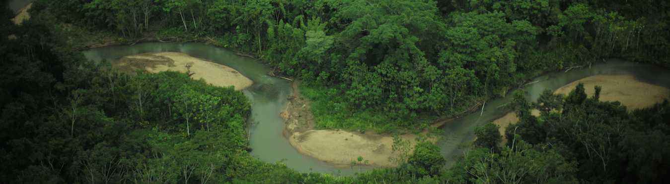 The Sapara Dream Healing in Ecuador
