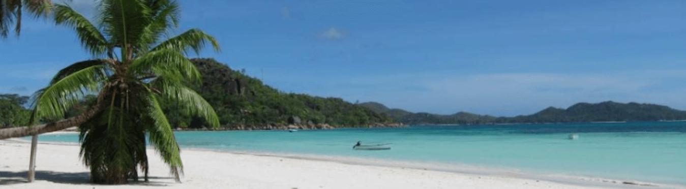 Marine Conservation & PADI Divemaster Internship in the Indian Ocean
