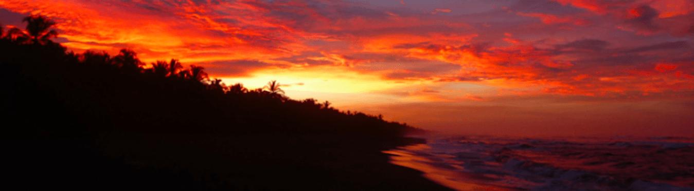 Short-Term Conservation Internship in Costa Rica