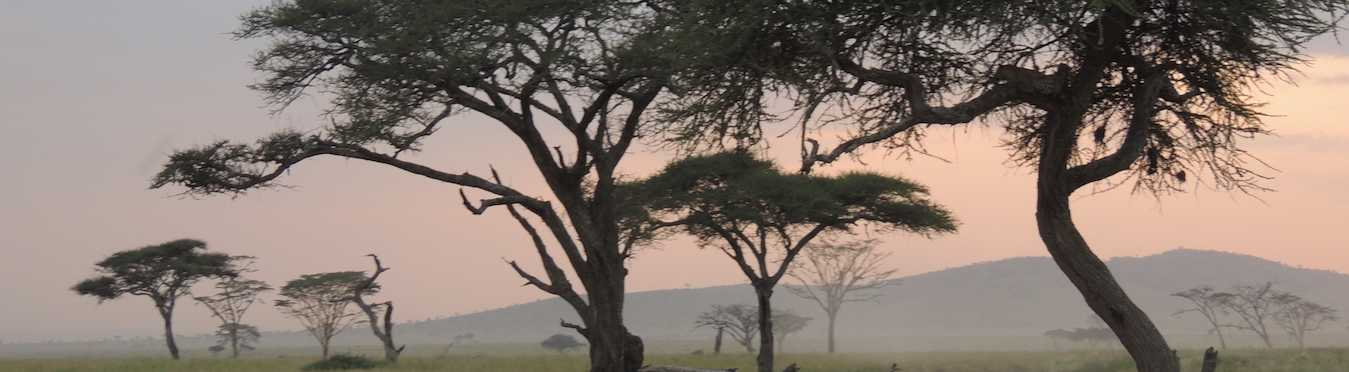 Kenya & Tanzania 4WD Safari Adventure