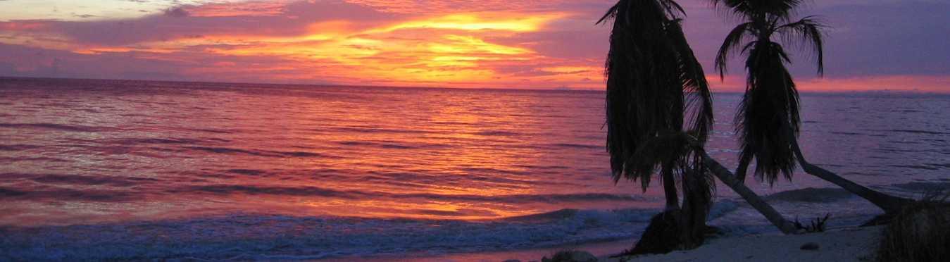 Marine Conservation & PADI Instructor Internship in Mexico