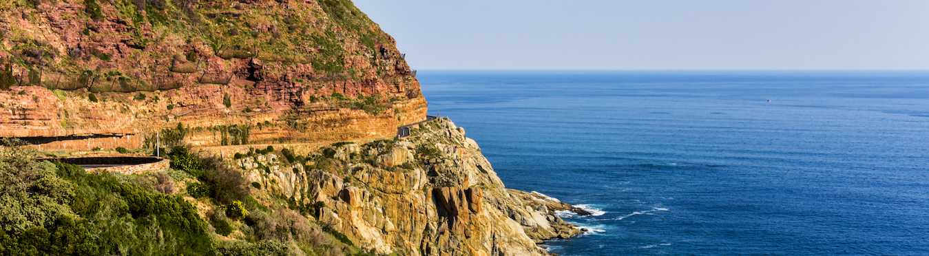 Wine & Whales in South Africa