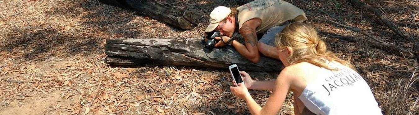 Wildlife Rehabilitation Volunteer Project