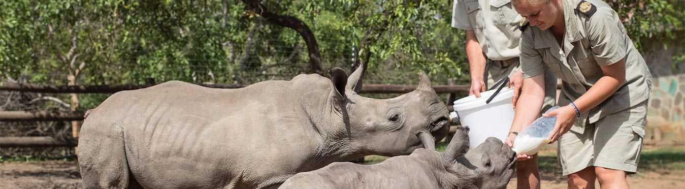 Endangered Species Volunteer Project