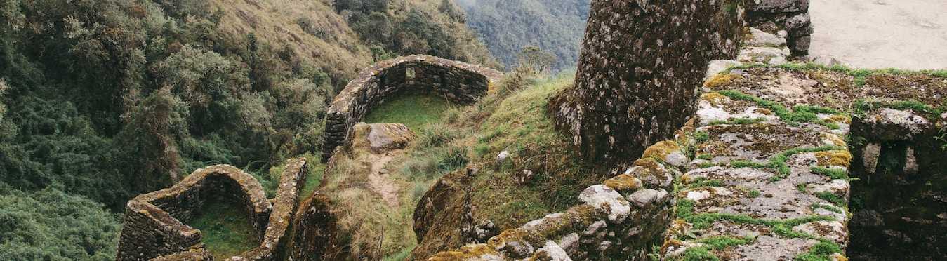 Jungle Conservation in Peru