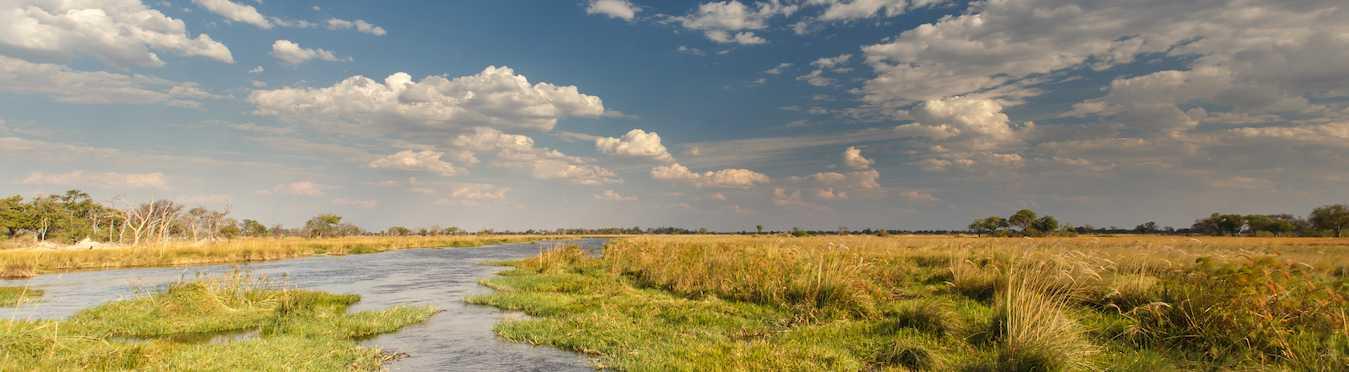 Botswana Safari in the Okavango Delta