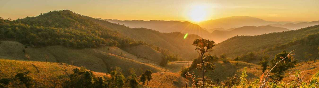 Short-Term Wildlife Conservation Internship in Thailand