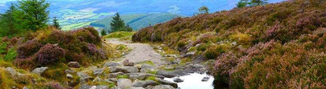 Self-Guided Dublin City Tour & Wicklow Way Hike